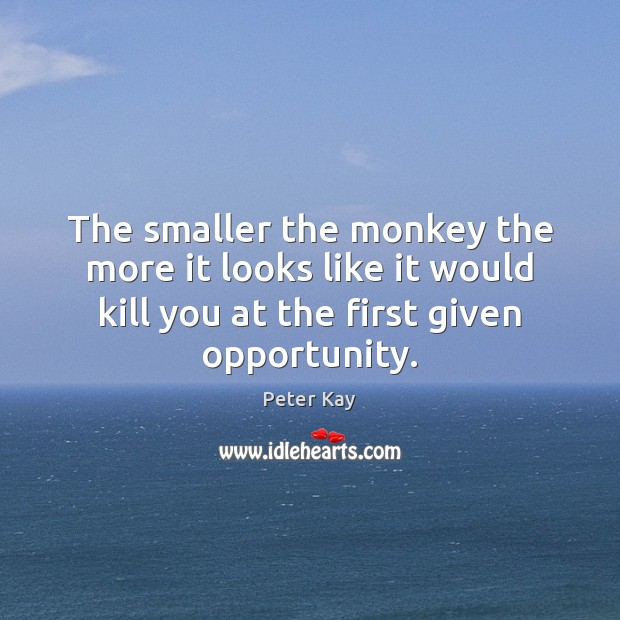The smaller the monkey the more it looks like it would kill Peter Kay Picture Quote