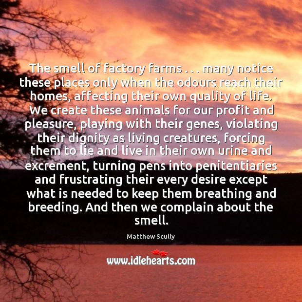 The smell of factory farms . . . many notice these places only when the Complain Quotes Image