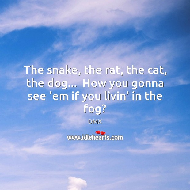 The snake, the rat, the cat, the dog…  How you gonna see 'em if you livin' in the fog? DMX Picture Quote