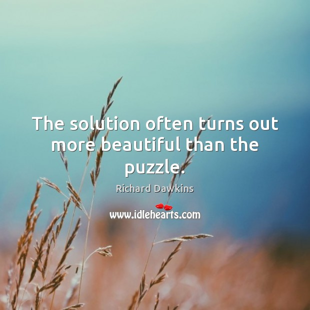Image, The solution often turns out more beautiful than the puzzle.