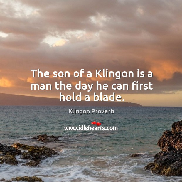 The son of a klingon is a man the day he can first hold a blade. Klingon Proverbs Image