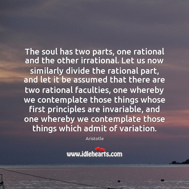 Image, The soul has two parts, one rational and the other irrational. Let