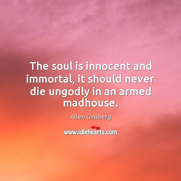 Image, The soul is innocent and immortal, it should never die ungodly in an armed madhouse.