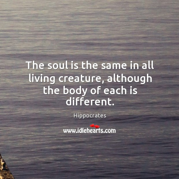 Image, The soul is same in all living creature.
