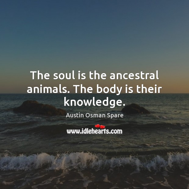 Image, The soul is the ancestral animals. The body is their knowledge.