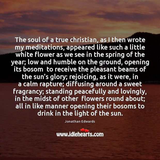 The soul of a true christian, as I then wrote my meditations, Image