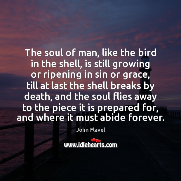The soul of man, like the bird in the shell, is still Image