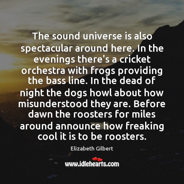 The sound universe is also spectacular around here. In the evenings there's Elizabeth Gilbert Picture Quote