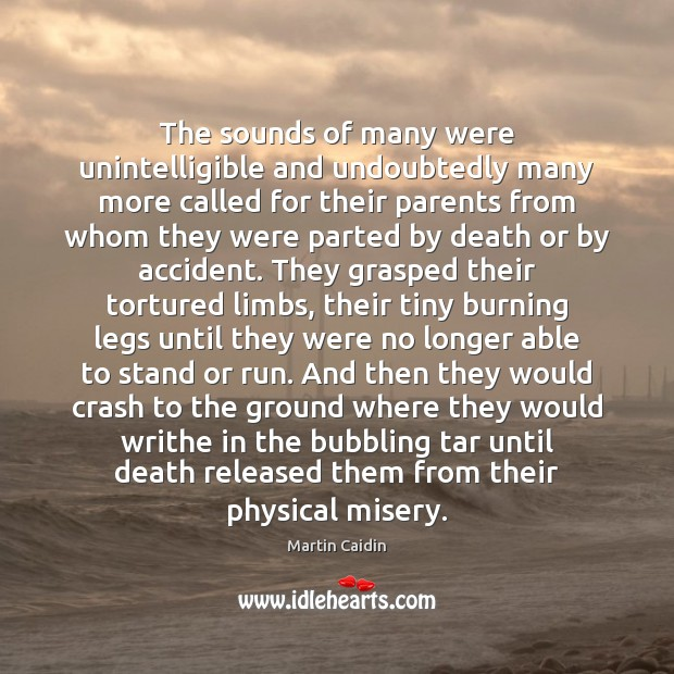 The sounds of many were unintelligible and undoubtedly many more called for Martin Caidin Picture Quote