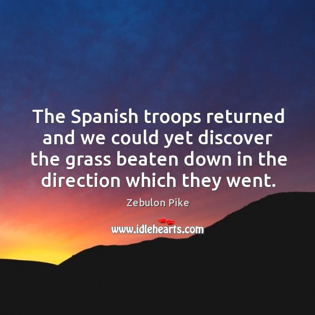 The spanish troops returned and we could yet discover the grass beaten down in the direction which they went. Zebulon Pike Picture Quote