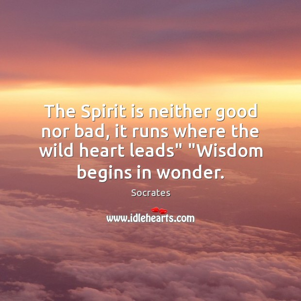 The Spirit is neither good nor bad, it runs where the wild Socrates Picture Quote