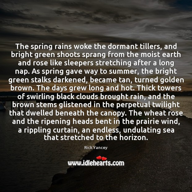 The spring rains woke the dormant tillers, and bright green shoots sprang Rick Yancey Picture Quote