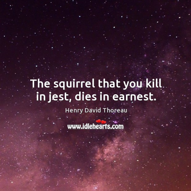 The squirrel that you kill in jest, dies in earnest. Image