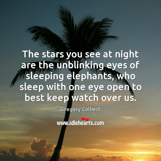 The stars you see at night are the unblinking eyes of sleeping Image