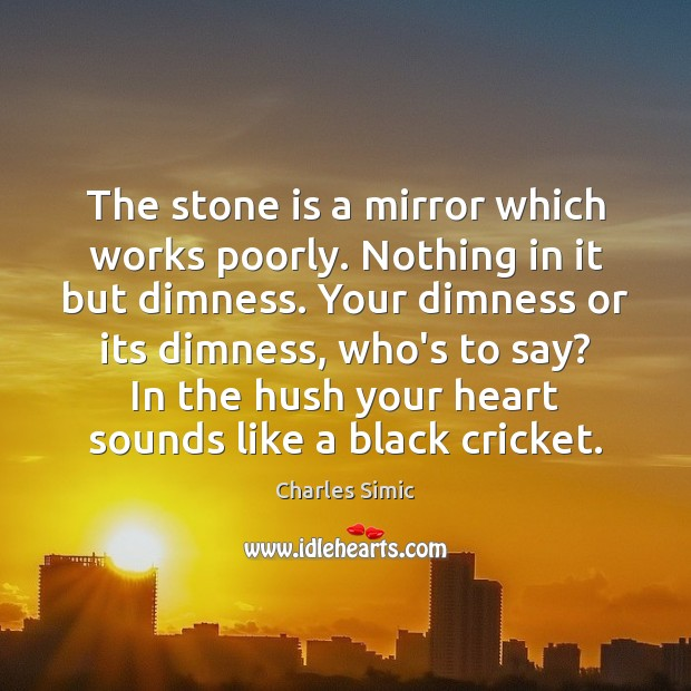 The stone is a mirror which works poorly. Nothing in it but Charles Simic Picture Quote