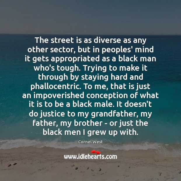 The street is as diverse as any other sector, but in peoples' Cornel West Picture Quote