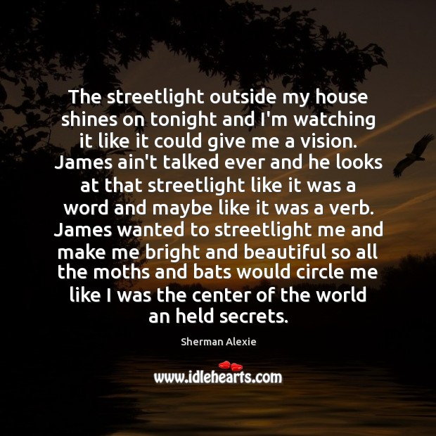 The streetlight outside my house shines on tonight and I'm watching it Sherman Alexie Picture Quote