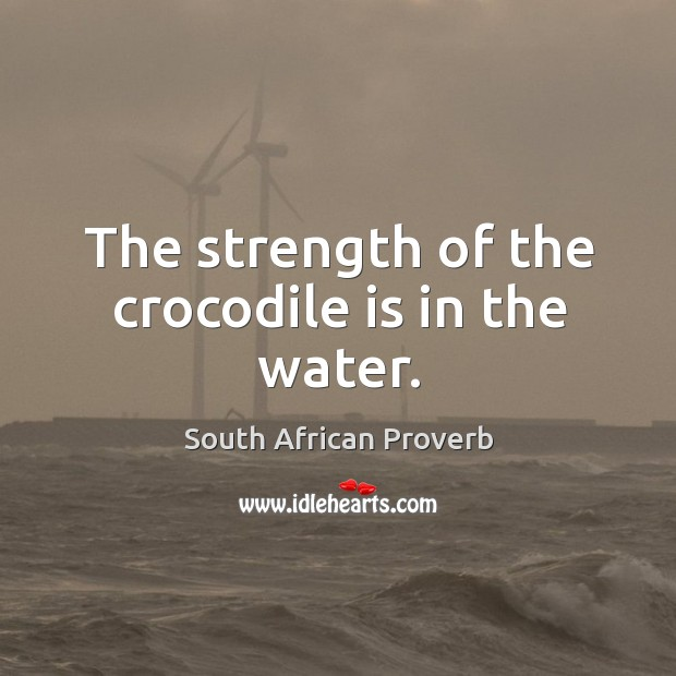 The strength of the crocodile is in the water. Image