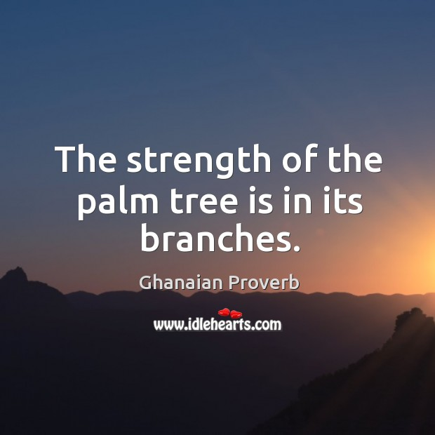 The strength of the palm tree is in its branches. Ghanaian Proverbs Image