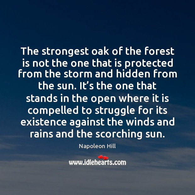 The strongest oak of the forest is not the one that is Image