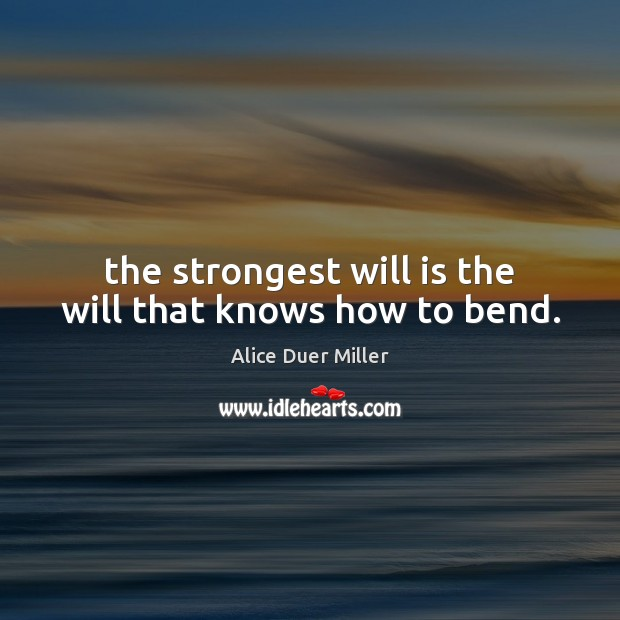The strongest will is the will that knows how to bend. Image