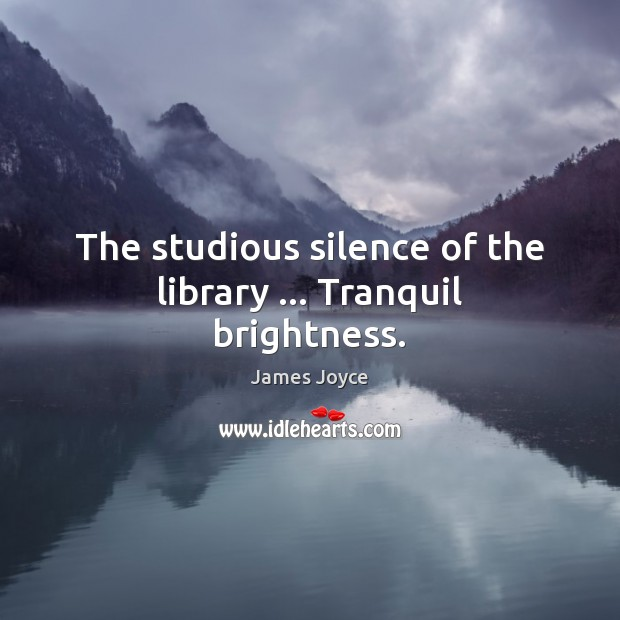 The studious silence of the library … Tranquil brightness. Image