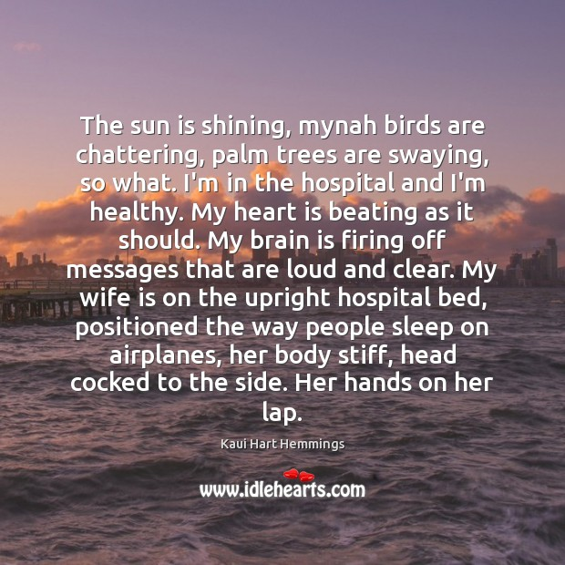 The sun is shining, mynah birds are chattering, palm trees are swaying, Image