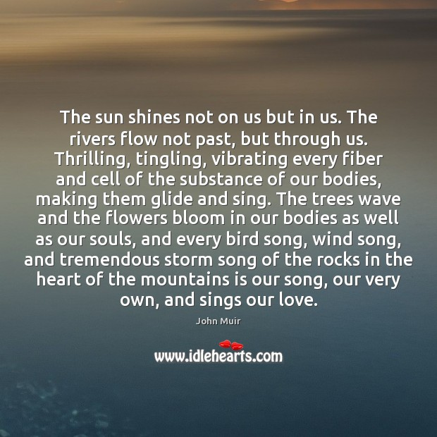 The sun shines not on us but in us. The rivers flow Image