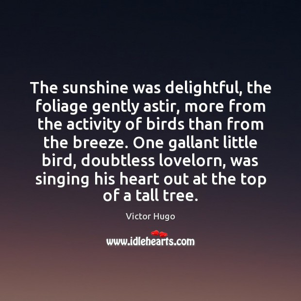 The sunshine was delightful, the foliage gently astir, more from the activity Victor Hugo Picture Quote