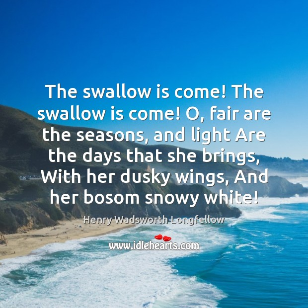 The swallow is come! The swallow is come! O, fair are the Image
