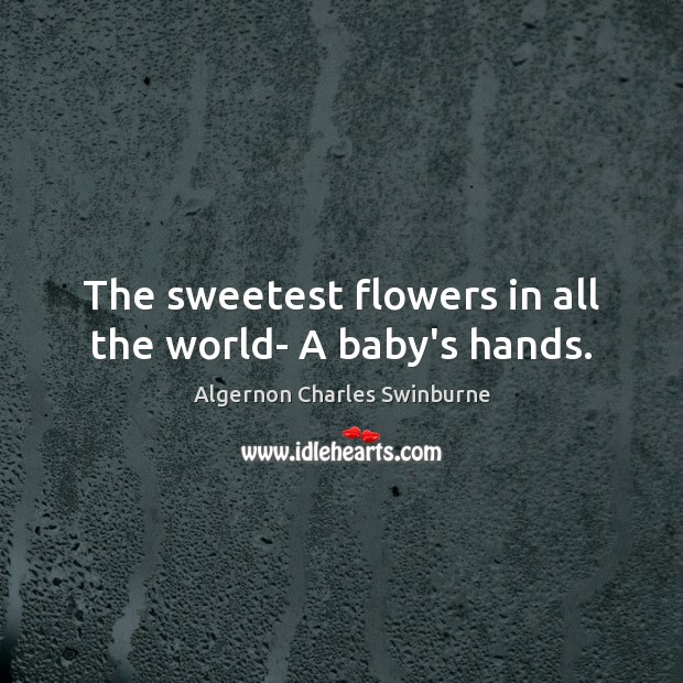 The sweetest flowers in all the world- A baby's hands. Algernon Charles Swinburne Picture Quote