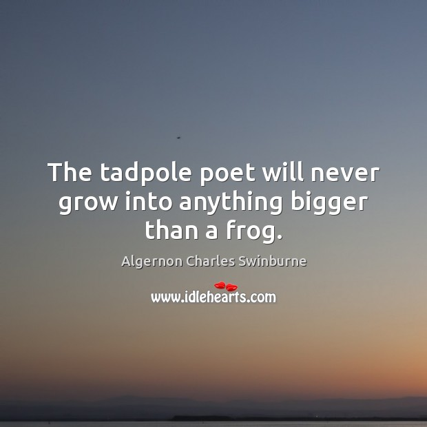 The tadpole poet will never grow into anything bigger than a frog. Algernon Charles Swinburne Picture Quote