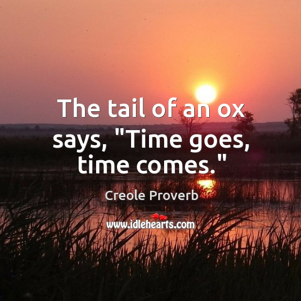 """The tail of an ox says, """"time goes, time comes."""" Creole Proverbs Image"""
