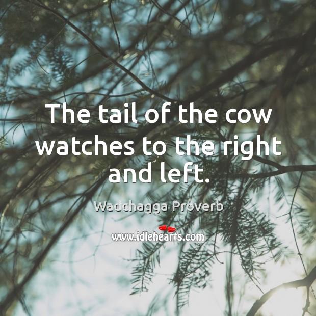 Wadchagga Proverbs