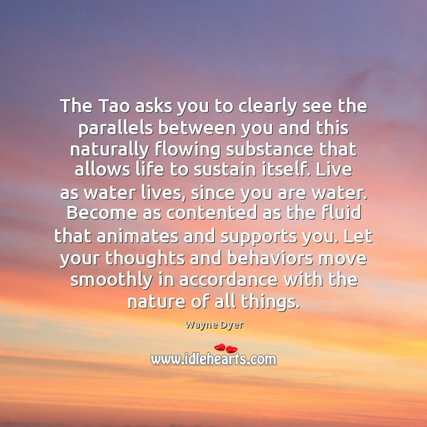 Image, The Tao asks you to clearly see the parallels between you and