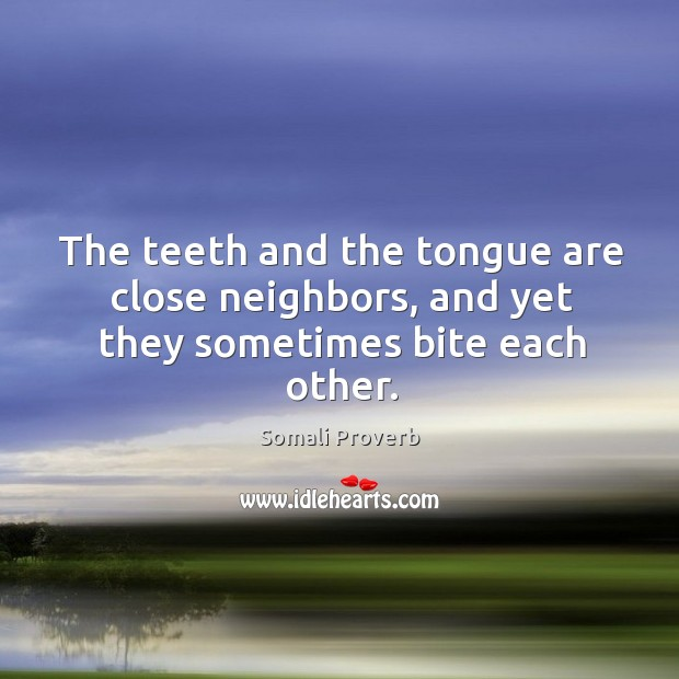 The teeth and the tongue are close neighbors Somali Proverbs Image