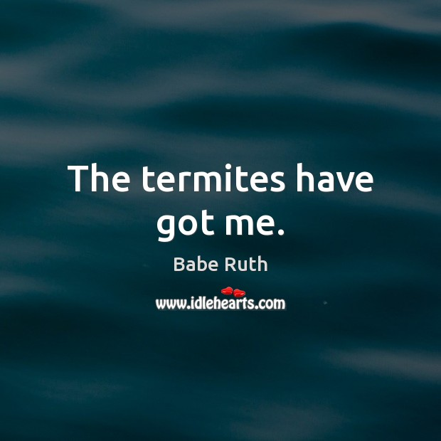 The termites have got me. Babe Ruth Picture Quote