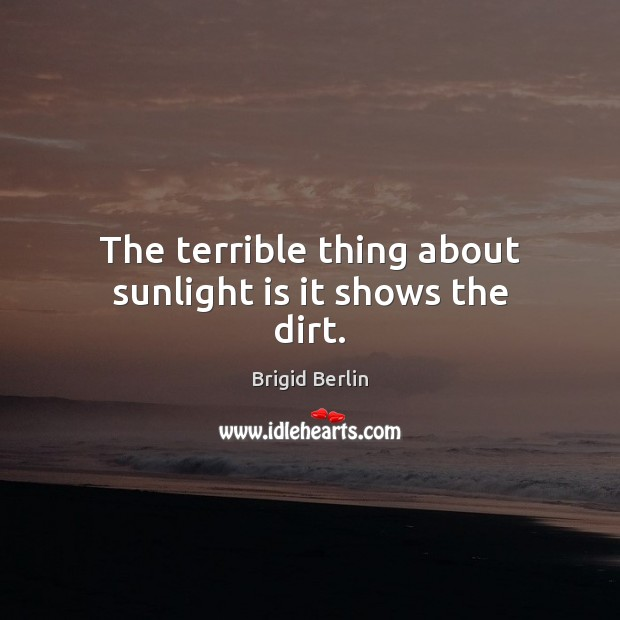 The terrible thing about sunlight is it shows the dirt. Image