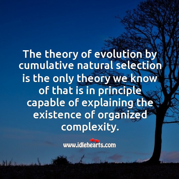 The theory of evolution by cumulative natural selection is the only theory Image