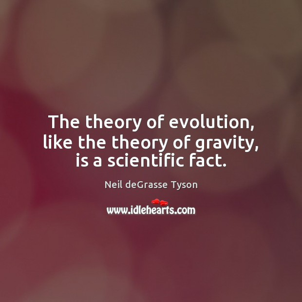 The theory of evolution, like the theory of gravity, is a scientific fact. Neil deGrasse Tyson Picture Quote