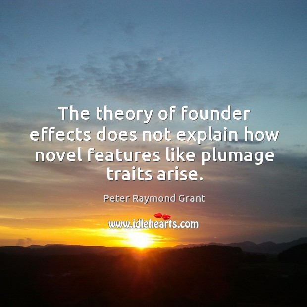 Image, The theory of founder effects does not explain how novel features like plumage traits arise.
