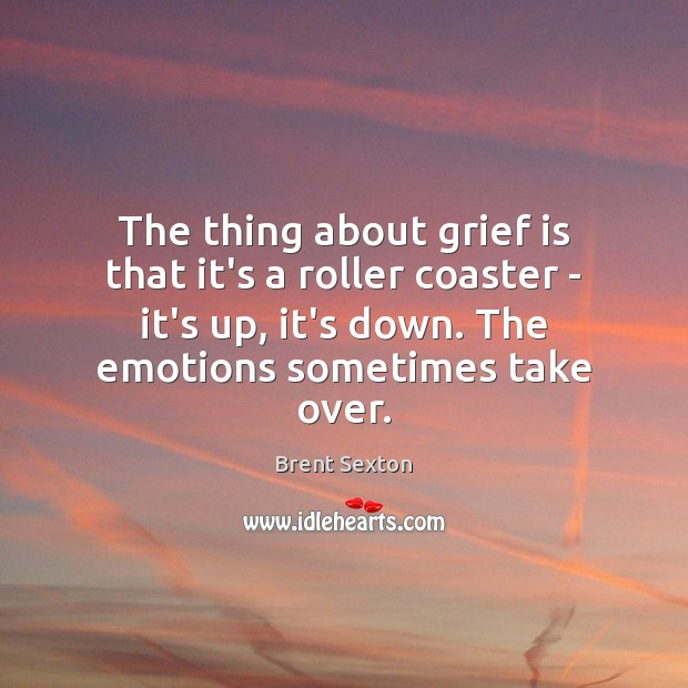 Image, The thing about grief is that it's a roller coaster – it's