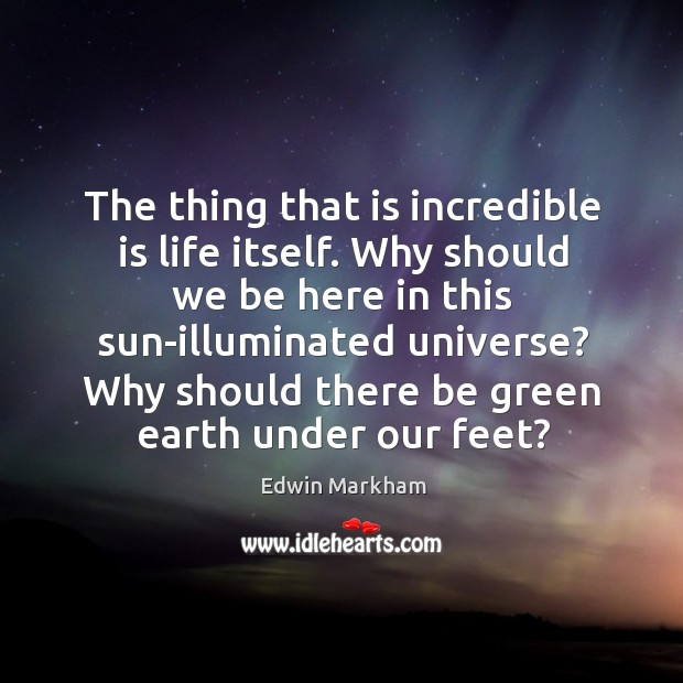 The thing that is incredible is life itself. Why should we be here in this sun-illuminated universe? Image