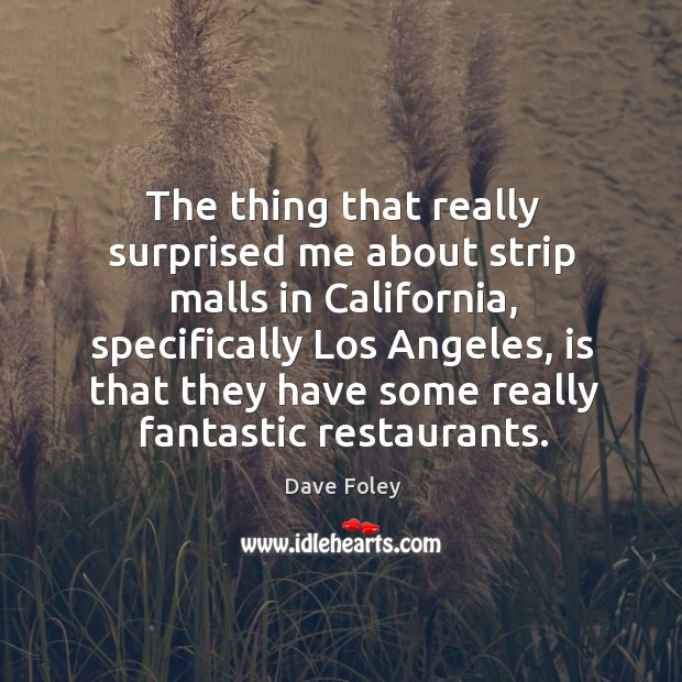 The thing that really surprised me about strip malls in california, specifically los angeles Dave Foley Picture Quote