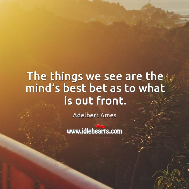 Image, The things we see are the mind's best bet as to what is out front.