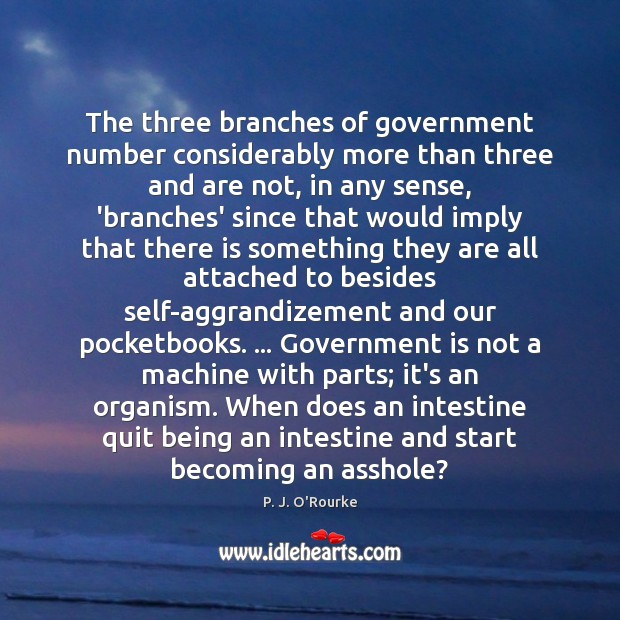 The three branches of government number considerably more than three and are Image