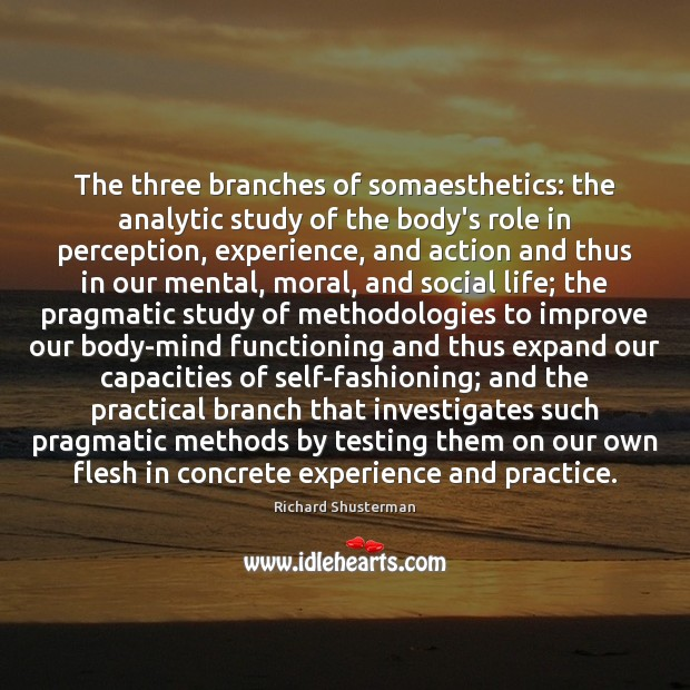 Image, The three branches of somaesthetics: the analytic study of the body's role