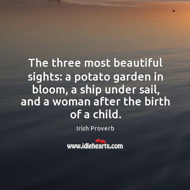 The three most beautiful sights Irish Proverbs Image