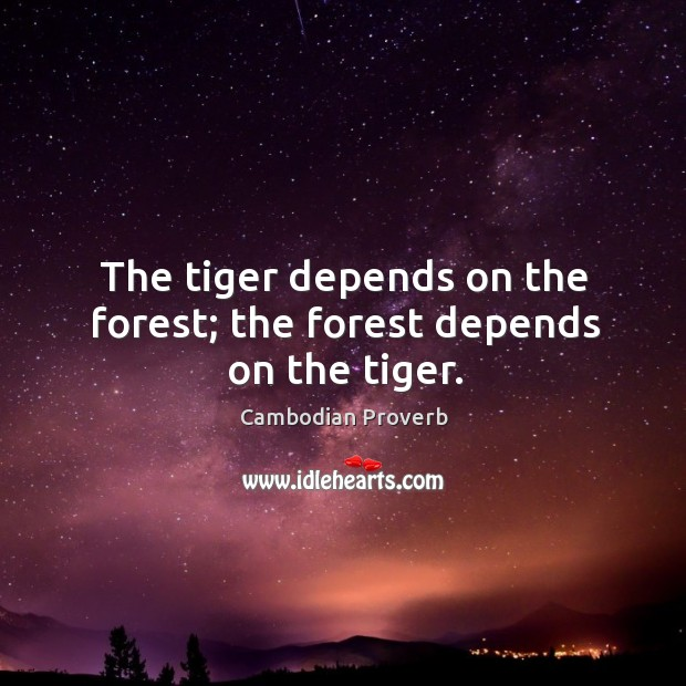 The tiger depends on the forest; the forest depends on the tiger. Cambodian Proverbs Image