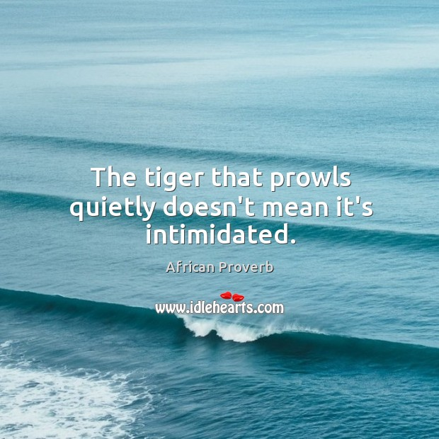 Image, The tiger that prowls quietly doesn't mean it's intimidated.